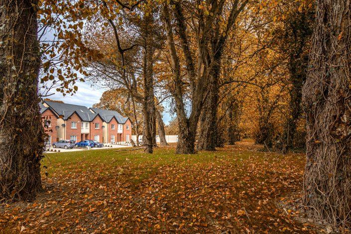 Autumn View Maydenhayes